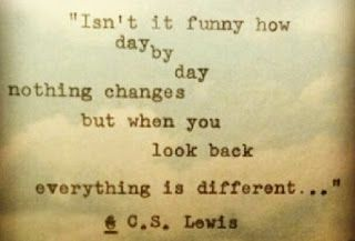 Oh my gosh, I could never explain it in words the way I felt but c.s. Lewis just did. Amazing