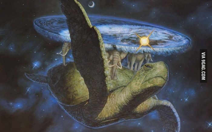 If you know this particular turtle, you have great taste in books