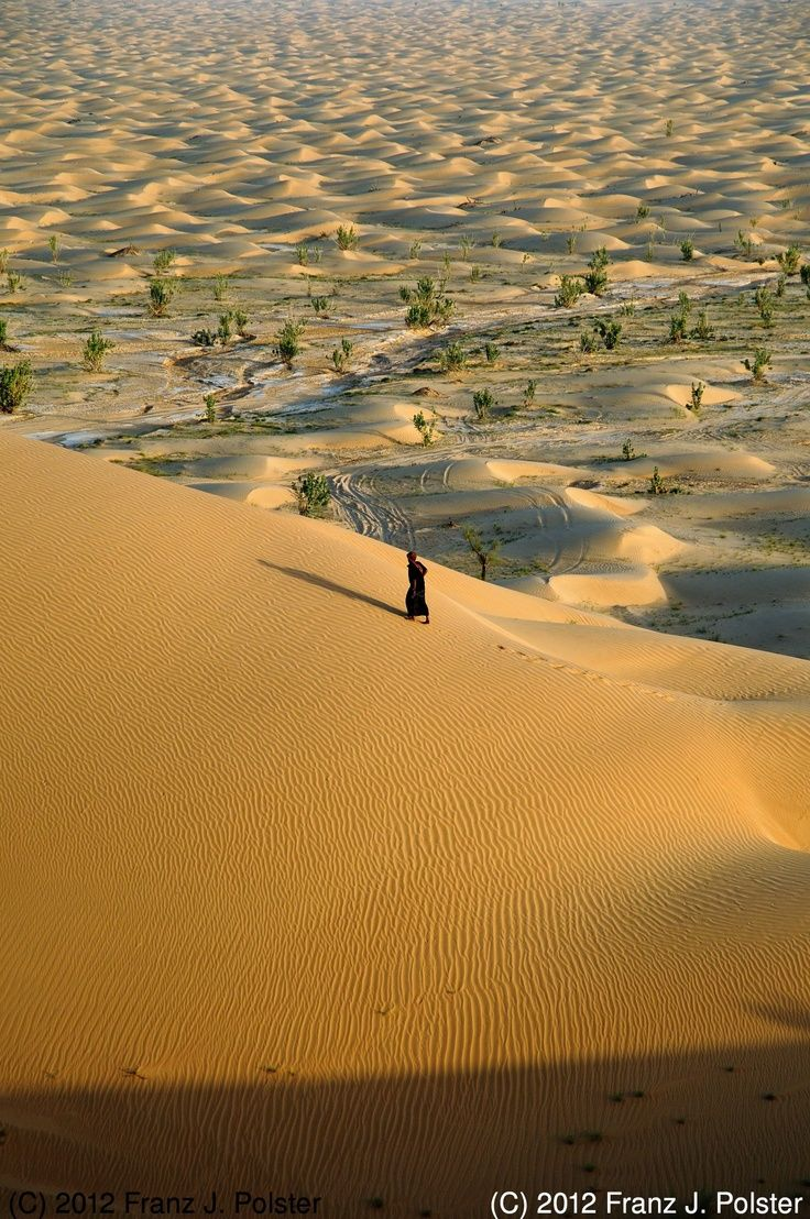 Oman | In the Desert. credit: Franz J. Polster. view on Fb www.facebook.com... #oman #destination #traveltooman