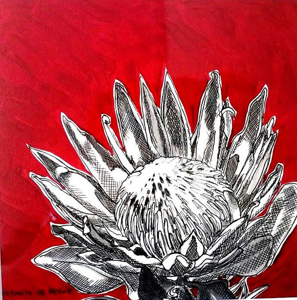 Hermien Van Der Merwe;  Title: Fynbos:  Table Mountain Fynbos 20 Medium: Pen-and-Ink drawing on paper with oil paint background Size: 200 x 200mm