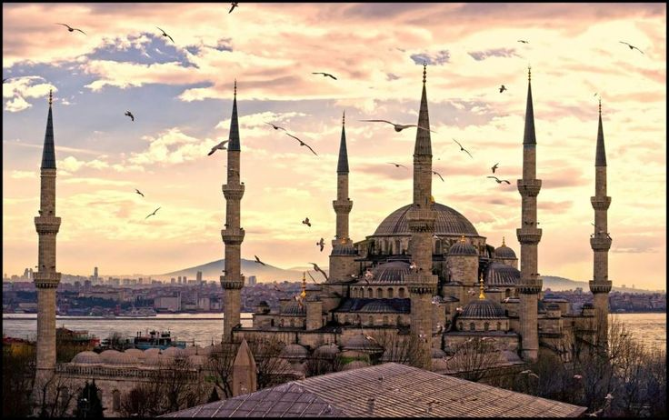This tour is a must in Istanbul. You will see highlights of Old Town such as Hippodrome, Blue Mosque, Hagia Sophia, Grand Bazaar, Topkapi Palace with Tourboks.