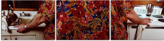 My Father's Shirt, 1994 | David Hilliard