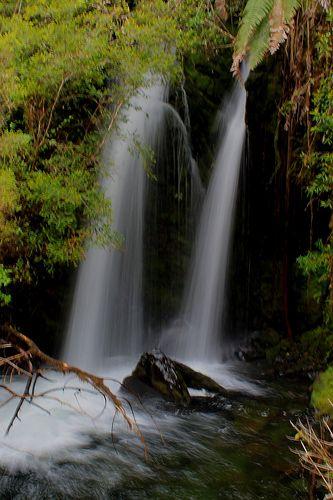 Salto Río Chaica, Parque Nacional Alerce Andino