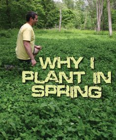 By Dean Weimer      Planting food plots in spring is a superior option for hunters looking to offer up an established, attractive, and nutri...
