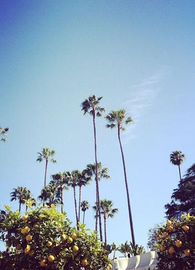 Los Angeles. #summer