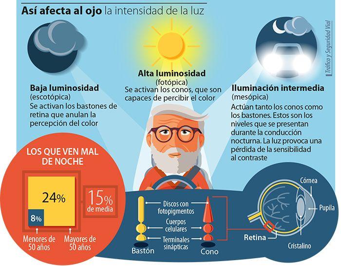 Los que ven mal de noche: así afecta la cantidad de luz al ojo humano.