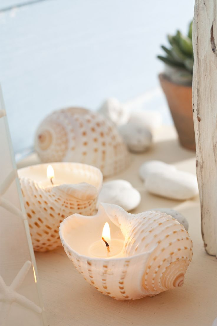 Tonna Shell Votives-These genuine shells come from the warm, tropical waters of the Gulf of Thailand. Their extraordinary beauty comes from Nature. Filled with unscented ivory wax, they become translucent when lit and the entire shell glows!