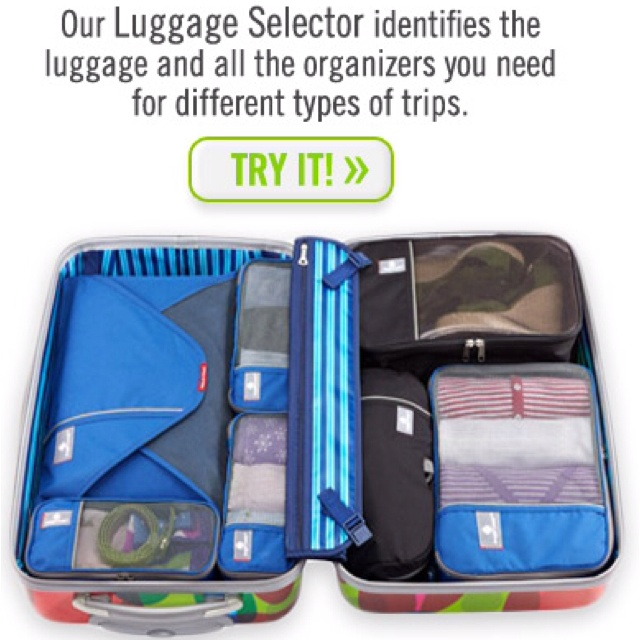 From The Container Store--Luggage organizers