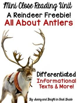 Reindeer Close Reading Freebie- All About Antlers- Differe