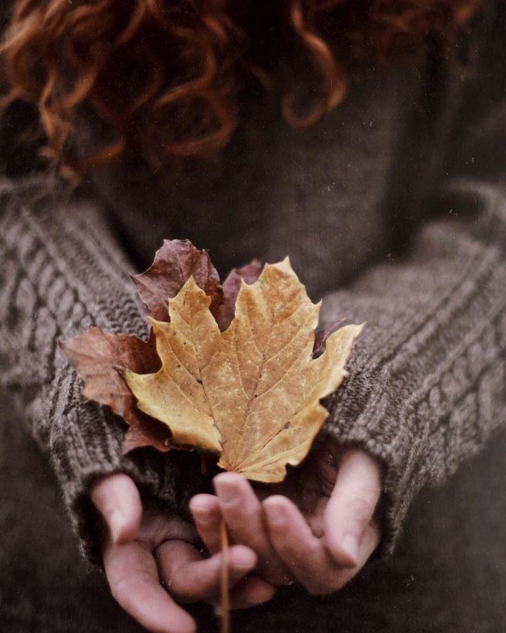 Happy Thursday, Happy Thanksgiving, Autumn Leaves, Autumn Aesthetic, Sweater  Weather, Hello Autumn, Cottage, Seasons, Happy Thanksgiving Day