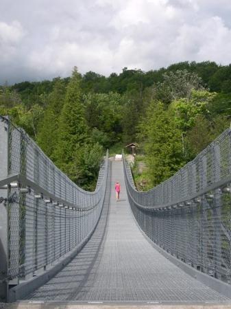 The suspension bridge at Ferris Provincial Park in Campbellford