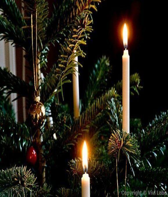 Pin von anne auf antique christmas pinterest stille nacht tannenbaum und nacht - Tannenbaum englisch ...