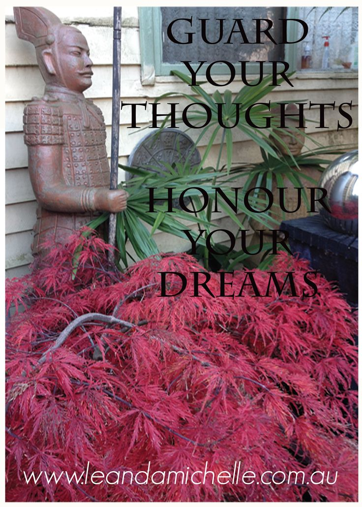"Photo taken at a friends garden ""Guard your Thoughts Honour your Dreams"" Leanda Michelle"
