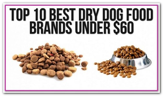 Best Dry Dog Food Brands 2019 Top 20 Best Dry Dog Food Brands For 2018 Nature S Variety Prairie Beef Barley Recipe Dry Dog Food Recipes Best Dry Dog Food