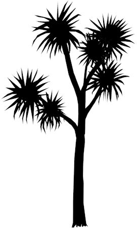 Image result for silhouette  nz trees
