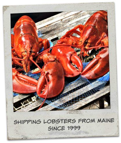 Live Maine lobster delivery since 1999. We ship frozen lobster tails and fresh seafood gifts to just about anywhere in the USA. since 1999.
