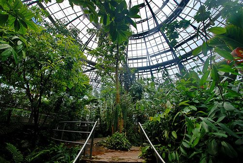 The Rose Hills Foundation Conservatory for Botanical Science at Huntington Gardens