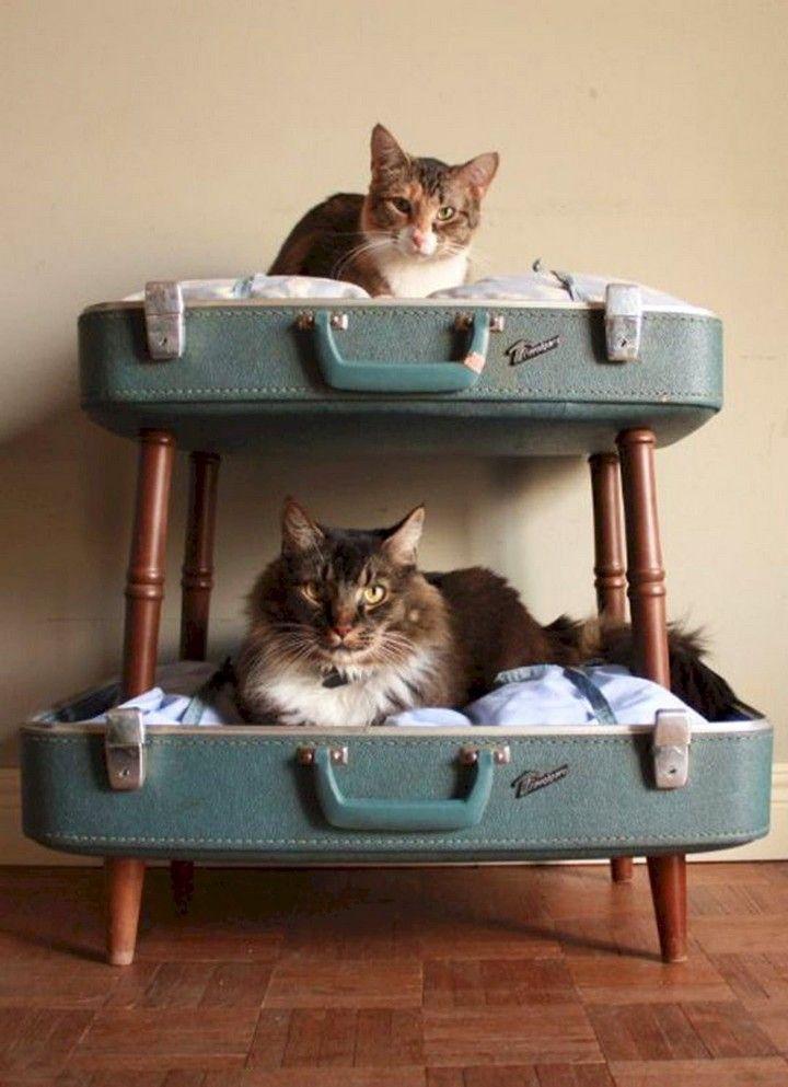 Cute Diy Cat Bed Ideas Decomagz In 2020 Cat Crate Diy Cat Bed Cat Crate Bed