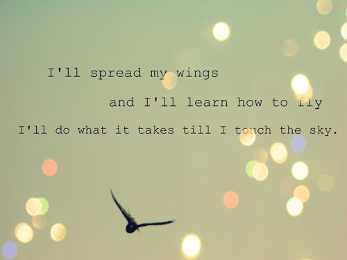 Live life the fullest...enjoy the ups and downs...but always get up and fly again!