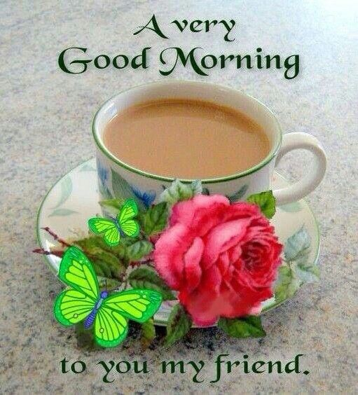 Good Morning My Beautiful Friend Quotes: 761 Best Images About Good Morning On Pinterest