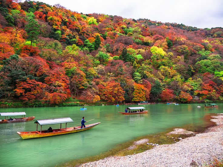 Arashiyama district in Kyoto. Visitors of Nisonin Temple must view the beautiful surrounding nature. Sagano is one of the great scenic places and there are many temples, shrines, and other old buildings to see. You will be intrigued not only by the sacred colorful place, but also because this is an essential part of Japanese civilization. Of course, there is more to see in other seasons too. In spring, the cherry blossoms are an indescribable sight, and unconsciously understand why Japanese…
