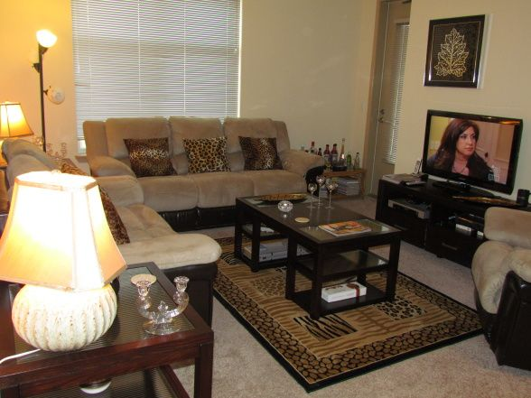 Cheetah themed rooms my animal print living room for Animal print living room decorating ideas