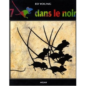 7 souris dans le noir - great story for inferring.  7 blind mice are all holding on to something, can you infer what part of the elephant they are touching?