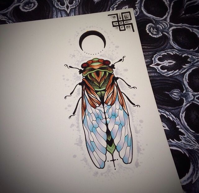 the 25 best cicada tattoo ideas on pinterest scientific tattoo mens floral chest tattoo and. Black Bedroom Furniture Sets. Home Design Ideas