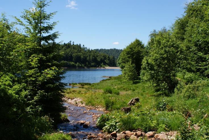 Lac de La Lande La Bresse