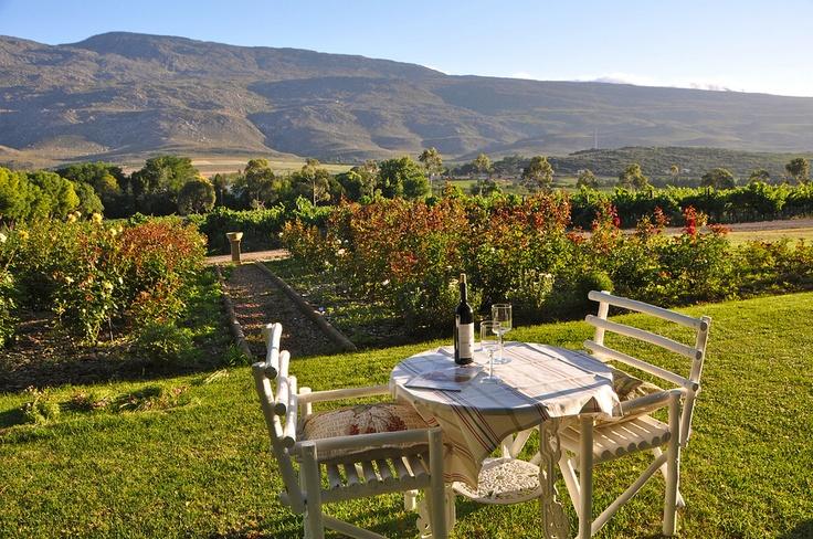 Lentelus Wine Farm Guest House, Barrydale, #South Africa