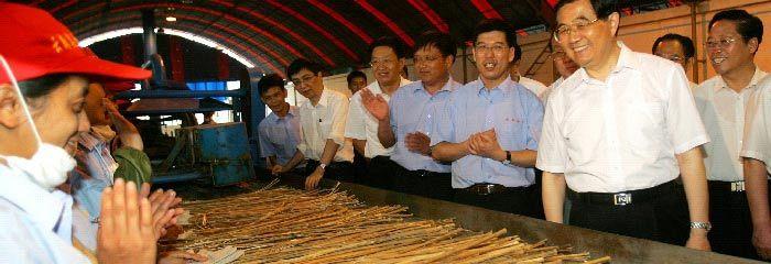 "Fibre stories: ""Cottonization"", hemp's future in fabrics in China - International Year of Natural Fibres 2009"