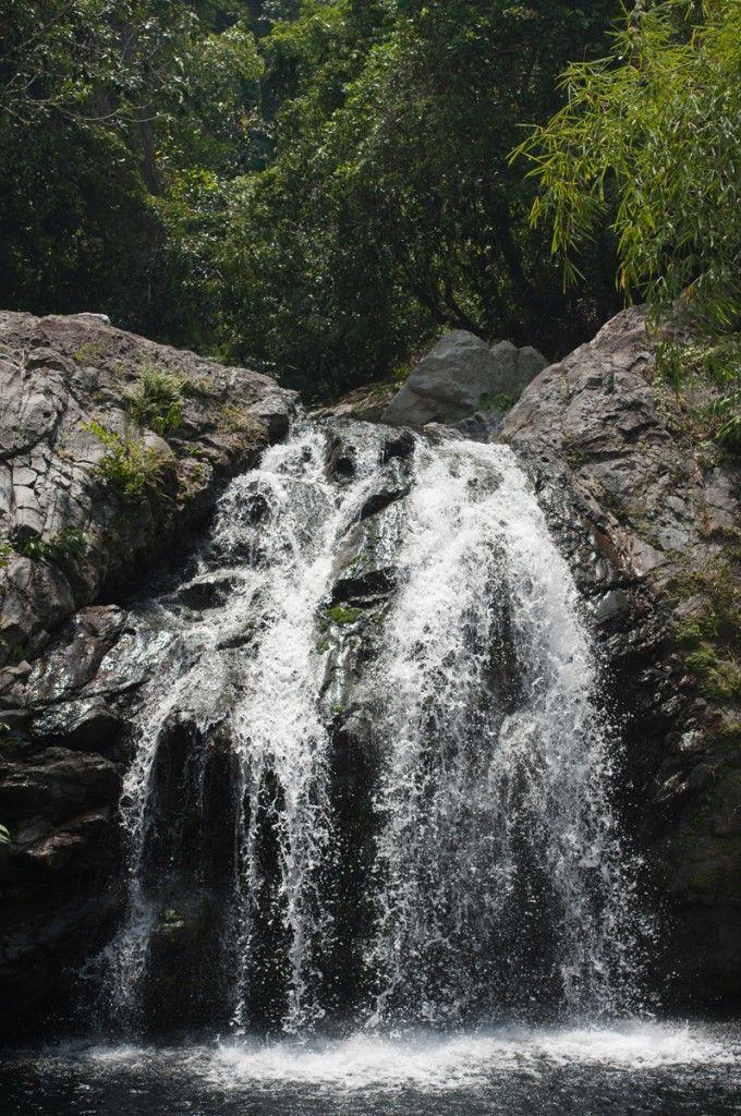Échange et visite des Blue Mountains en Jamaïque (Detour Local) -> Les Chutes à la fin d'une descente à vélo c'est bien mérité... www.detourlocal.com/echange-visite-velo-blue-mountains-jamaique/