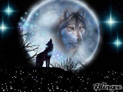 Wolfs Mond