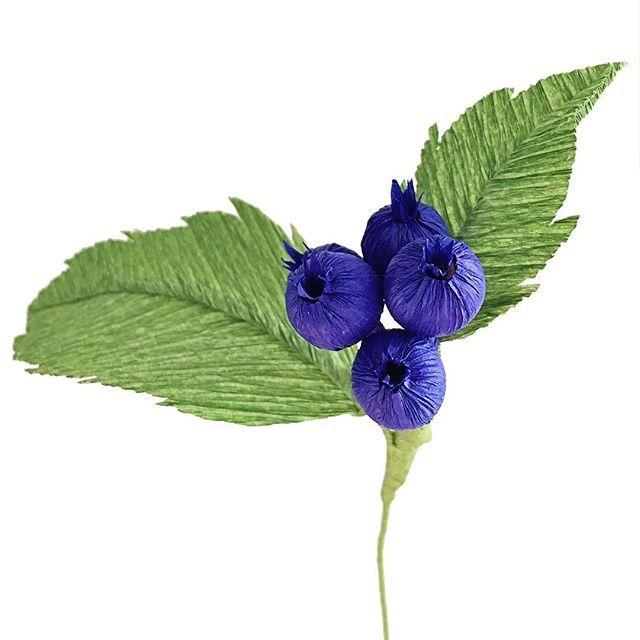 """He had a crush on a blueberry bush once."" —Rick Riordan"