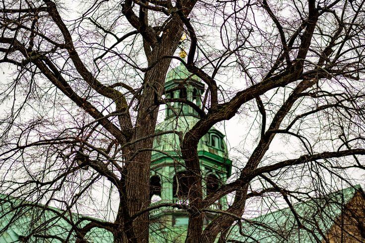Hildesheimer Dom.  Hier wollte ich mal einen anderen Ausblick auf die Domspitze haben die man sonst nicht so unbedingt auf Fotos entdeckt. Da sich momentan der Blattwuchs der Bäume in Grenzen hält bietet es sich an die Schönheit dieses Turms zwischen dem Geäst einzufangen. . . . . . . #olympus #olympusomd #em1 #omd #church #kirche #dom #urban #urbanoverrun #tree #baum #streetphotography #architecture #citylife #building #cityscape #town #architecturelovers #archidaily #streetphoto #urbanart…