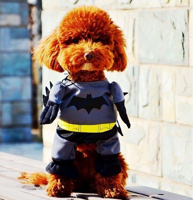 Superheroes Halloween Batman Dog Costume $12.99