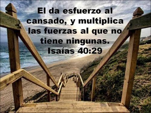 Versiculos De La Biblia De Fe: 17 Best Images About Versiculos De La Biblia On Pinterest