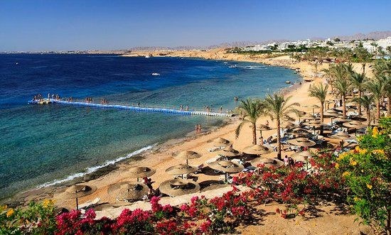 Adding Egypt to my list of places to travel...especially Sharm El Sheikh!!