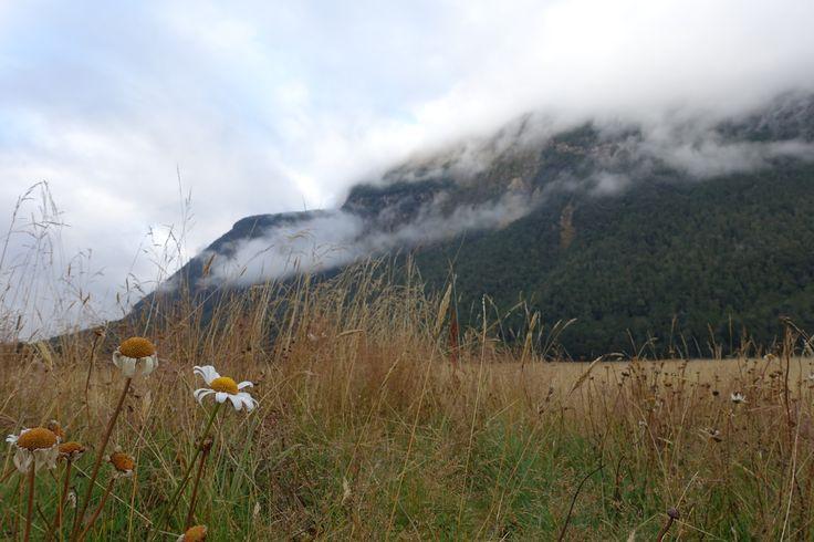 Eglington Valley, South Island
