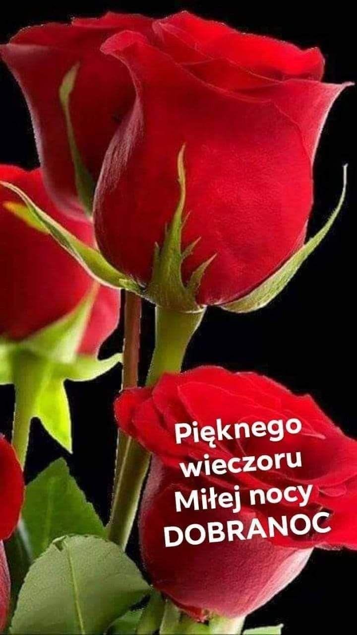 Pin By Monika Budzilek On Dobranoc In 2020 With Images Dobranoc Piekne Roze Roze