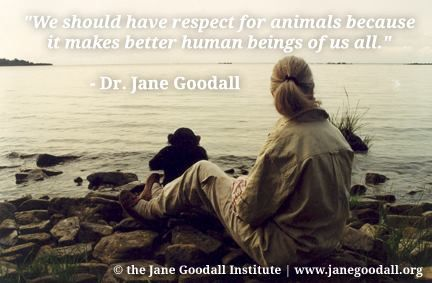 animals need respect from humans Why protect our oceans people need air to breathe, water to drink, food to eat, new medicines, a climate we can live in, beauty, inspiration and recreation.