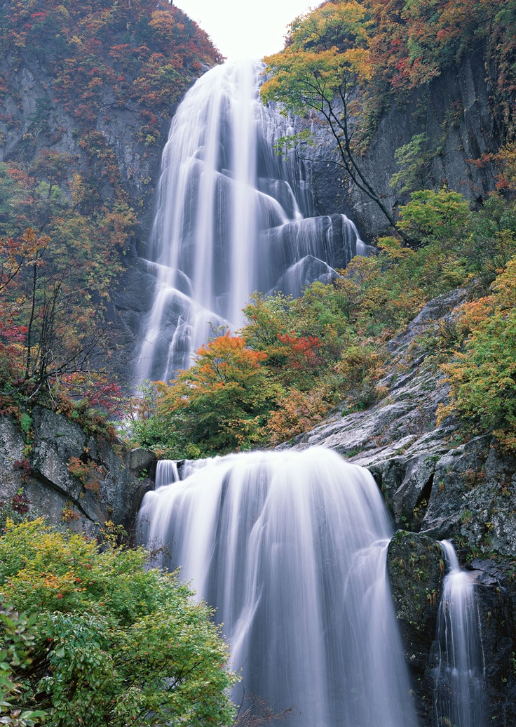 77 best home decor wallpapers waterfall images on for Wallpaper home singapore