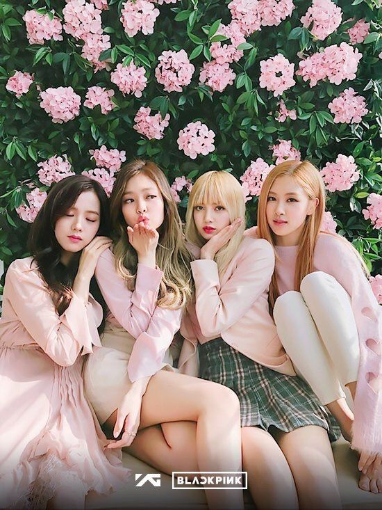Wow Black pink Pink color