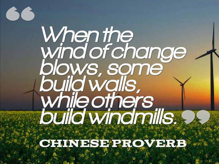 """When The Wind Of Change Blows, Some Build Walls, While"