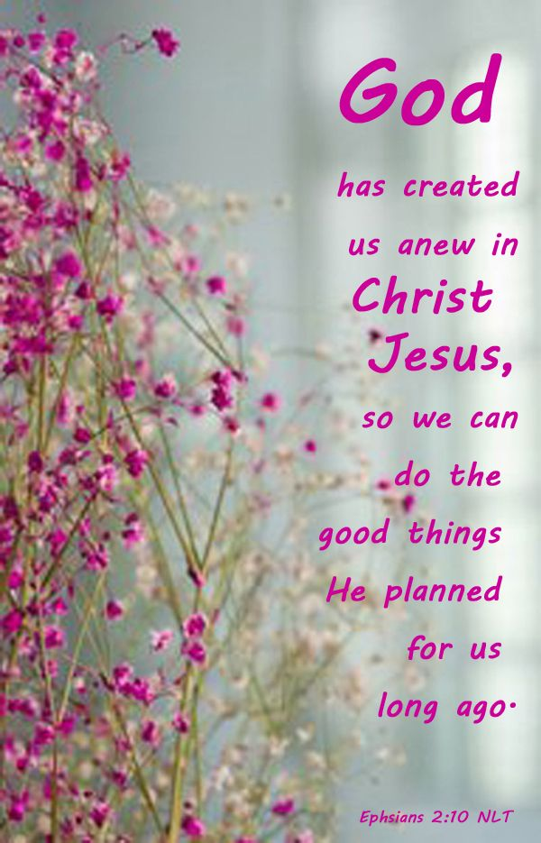 Bible Quoted Flower Pictures on Pinterest | Psalms, The Lord and 2 ...
