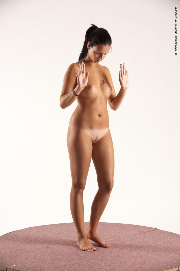 porn art female anatomy