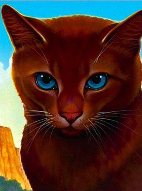 Warrior Cats Guide Wattpad