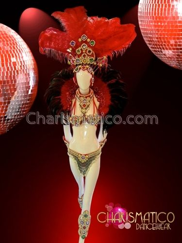 Rio Carnival Costumes Peacock | ... -piece feathered Red and gold beaded Brazilian carnival costume set