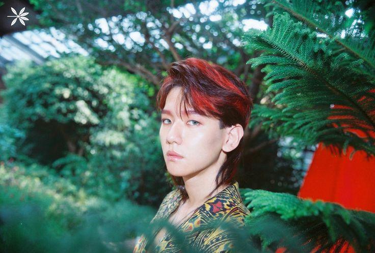 MY STRAWBERYYSYS | baekhyun the war - koko bop teaser photo