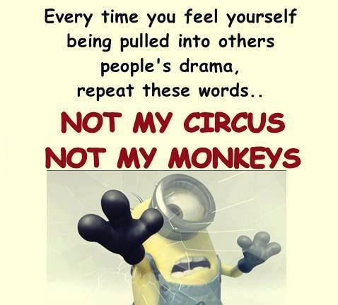Best 25 Comedy Quotes Ideas On Pinterest Minions Funny